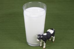 ビタミンAを含むミルク